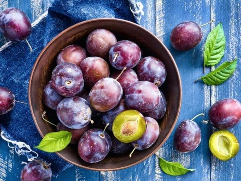 Say hello to plum oil, the elixir to all your skin related woes