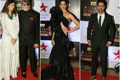 IN PICS: Celebs stun at the Star Screen Awards